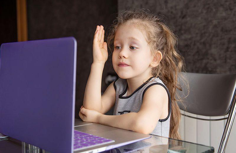 School girl is studying online. Home schooling. Distance educat